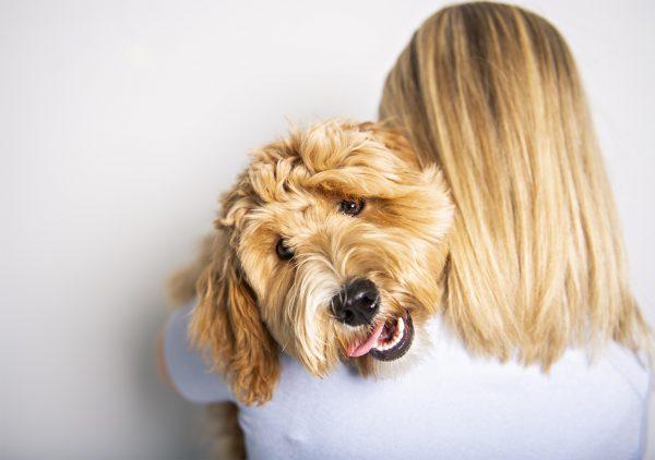 woman-hugging-a-labradoodle